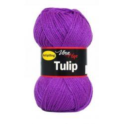 Tulip fialová