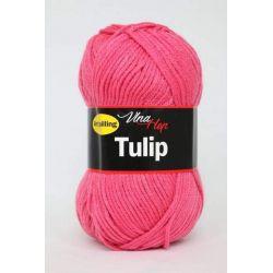 Tulip růžová