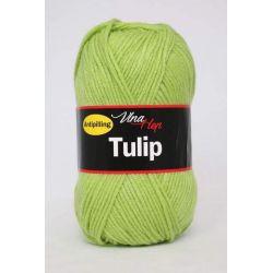 Tulip zelená